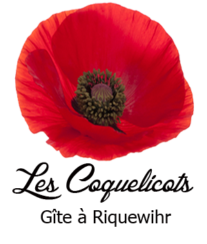 appart_coquelicots1